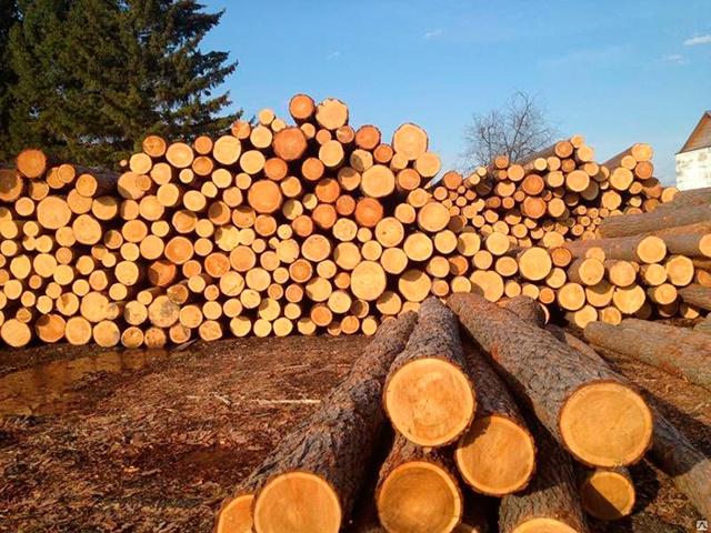 Как получить бесплатный лес на строительство, ремонт дома в 2020 году: кому положено 150 кубов леса
